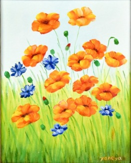 Wiled Poppies 11x14 canvas panel
