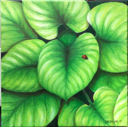 Dark green hosta leaves with a ladybug 12x12 stretched canvas