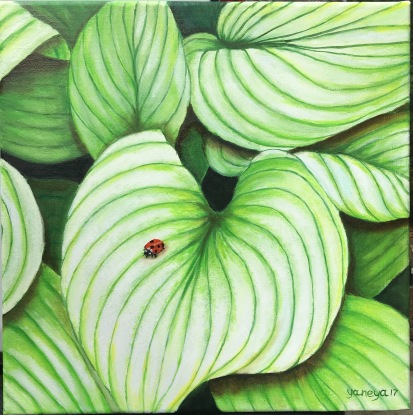 Ladybug on a Light green hosta leave 12x12 stretched canvas
