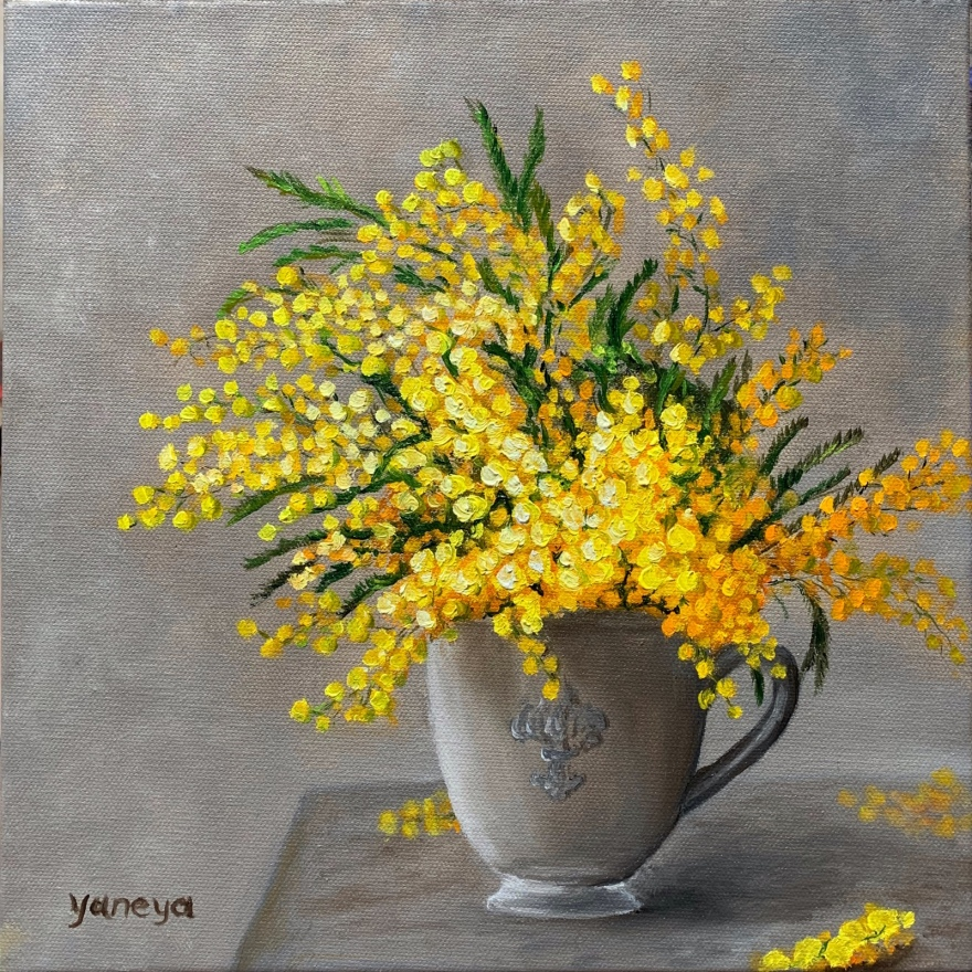 """Mimosa flowers - oil on 12x12"""" canvas"""